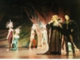 1984 Camelot